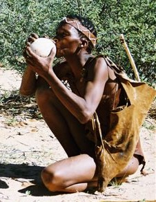 Grade 5 - Term 1: Hunter-gatherers and herders in Southern