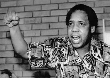 Thembisile Chris Hani Timeline 1942 - 2003 | South African