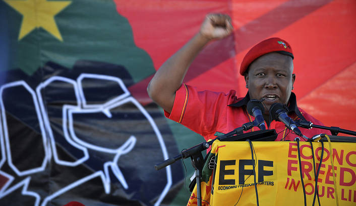 Image result for economic freedom fighters