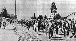 59f45282de Liberation history Timeline 1910-1919