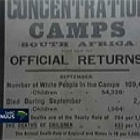 Kitchener proposes establishment of concentration camps